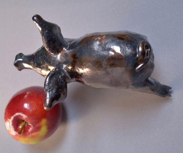1 Kasia Włoch Świnka 'Zielony Błysk' 3